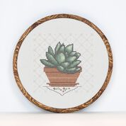 Go to Product: Anchor Cross Stitch Succulent in color