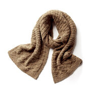 Go to Product: Patons Texture Mix Knit Scarf in color