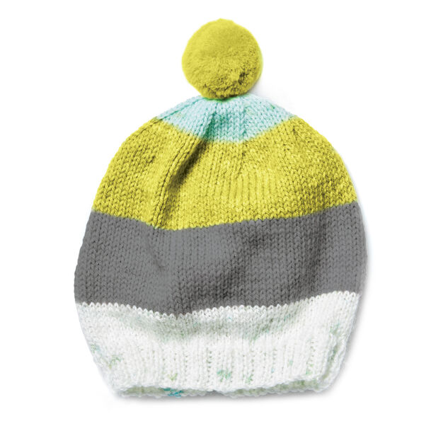 Caron Knit Cap in color