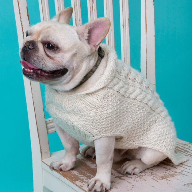 Red Heart Cabled Dog Sweater, XS in color