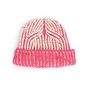 Go to Product: Caron Knit Bicolor Brioche Beanie in color