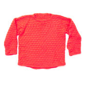 Go to Product: Caron Stylin' Sweater, 4 yrs in color