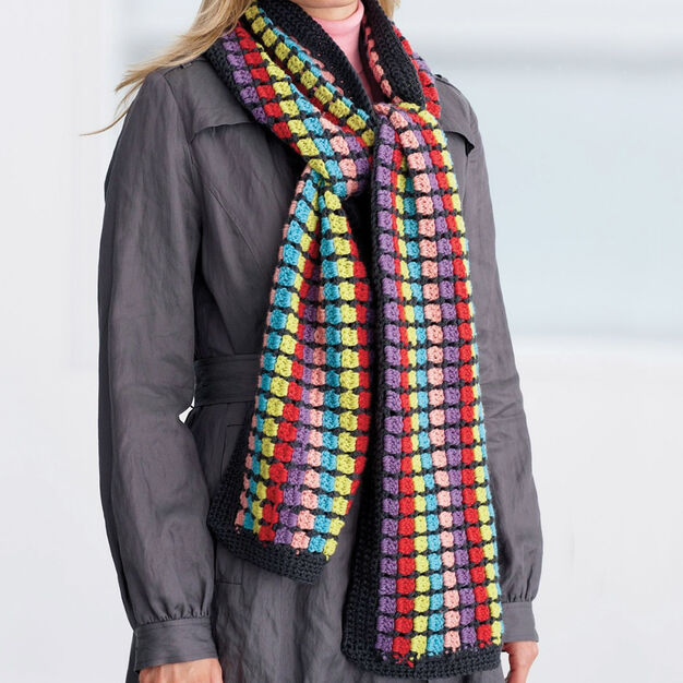 Patons Multi-Colored Scarf in color