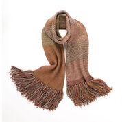 Caron Linen Stitch Knit Scarf