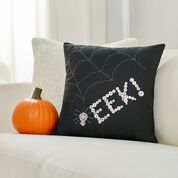 Go to Product: Coats & Clark Eek! A Spider Pillow for Halloween in color