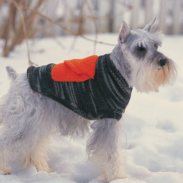 Bernat Dog Coat With Cargo Pockets , Size 4 in color