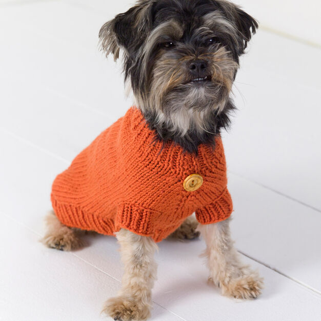 Red Heart Dog Sweater, XS in color