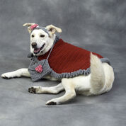 Red Heart Diva Dog Outfit, S