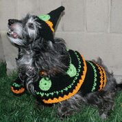 Go to Product: Red Heart Dog's Crochet Witch Costume, S in color