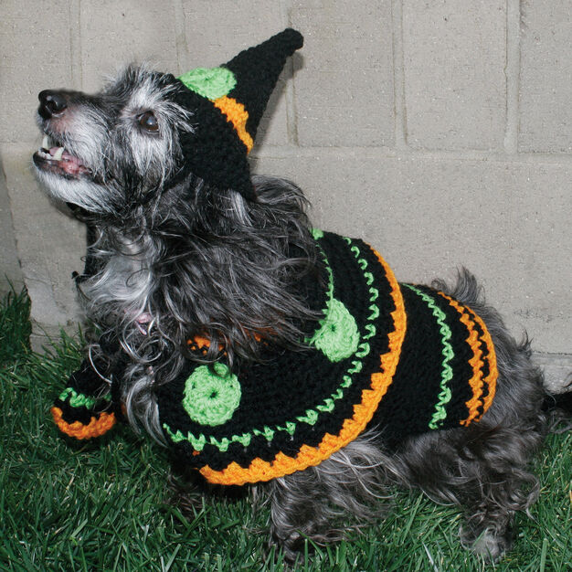 Red Heart Dog's Crochet Witch Costume, S in color