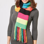 Go to Product: Caron Simple Stripes Knit Scarf in color