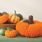 Lily Sugar'n Cream Pumpkins