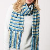 Caron Color Weave Scarf