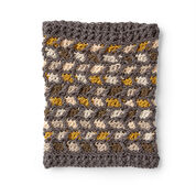 Go to Product: Caron Comme Ci Comme Ca Crochet Cowl in color