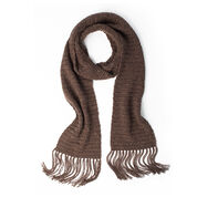 Go to Product: Caron Let's Begin Crochet Scarf in color