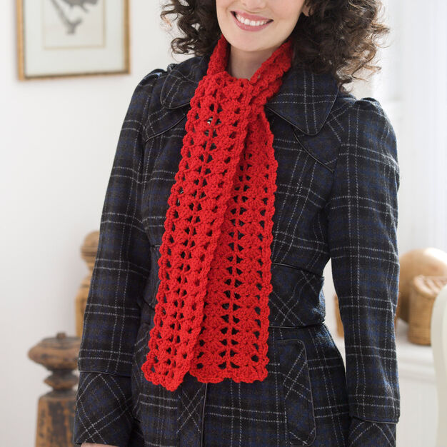 Red Heart Heartwarming Crochet Scarf in color