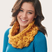 Go to Product: Bernat Colossal Cowl in color
