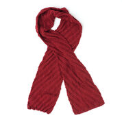 Go to Product: Caron Steep Diagonal Scarf in color
