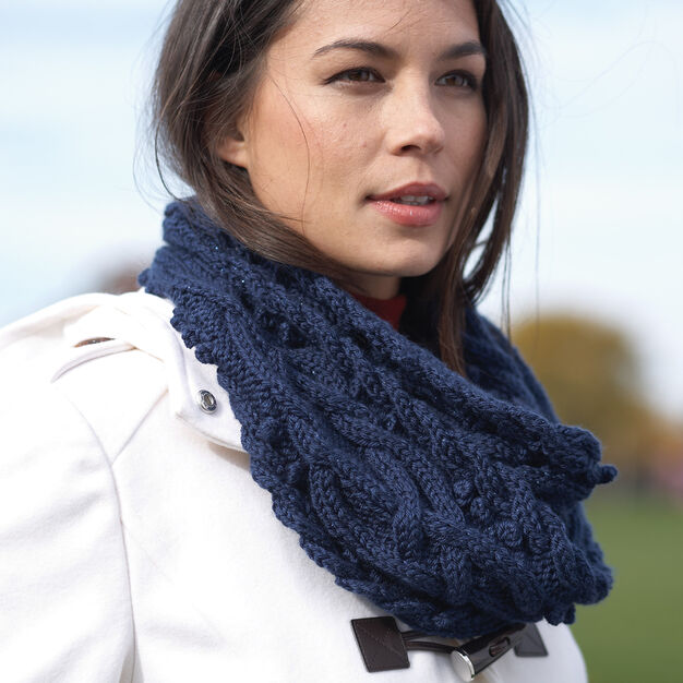Bernat Sumptuous Cable Cowl in color
