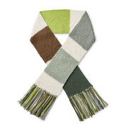 Caron x Pantone Knit Color Swatch Scarf