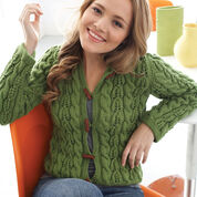 Go to Product: Patons Cables and Lace Hoodie, XS/S in color