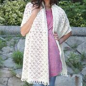 Patons Crochet Shawl