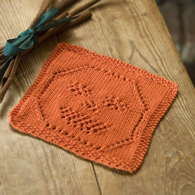 Red Heart Lacy Jack-O-Lantern Dishcloth in color
