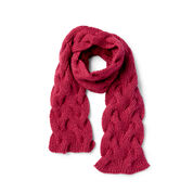 Go to Product: Patons Both Sides Now Knit Scarf in color
