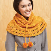 Go to Product: Bernat Drawstring Cowl in color