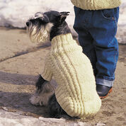 Go to Product: Patons Cables and Hearts Dog Coat, S in color