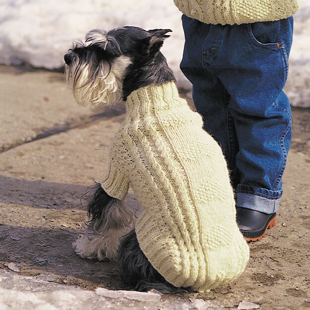 Patons Cables and Hearts Dog Coat, S in color