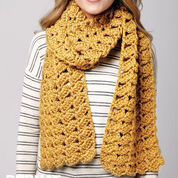 Go to Product: Bernat Shifting Shells Scarf in color