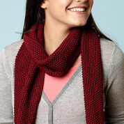 Go to Product: Caron Knit Burgundy Scarf in color