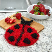 Red Heart Lucky Ladybug Scrubby