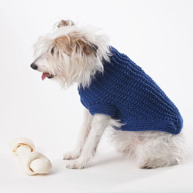 Bernat Knit Dog Coat, S in color