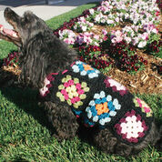 Go to Product: Red Heart Dog's Crochet Granny Square Sweater, S in color