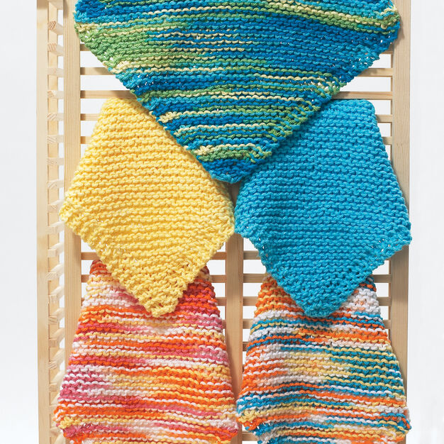 Bernat Easy Dishcloth in color