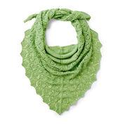Patons Pastoral Lace Knit Shawl
