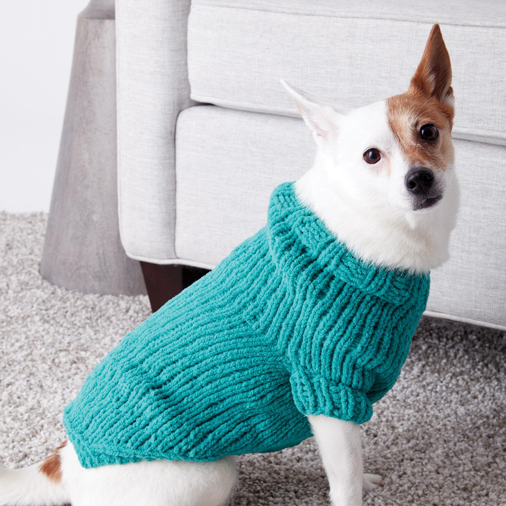 Bernat Knit Dog Coat, S Pattern | Yarnspirations