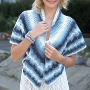 Go to Product: Patons Knit Shawl in color