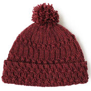 Go to Product: Patons Lattice Twist Hat in color