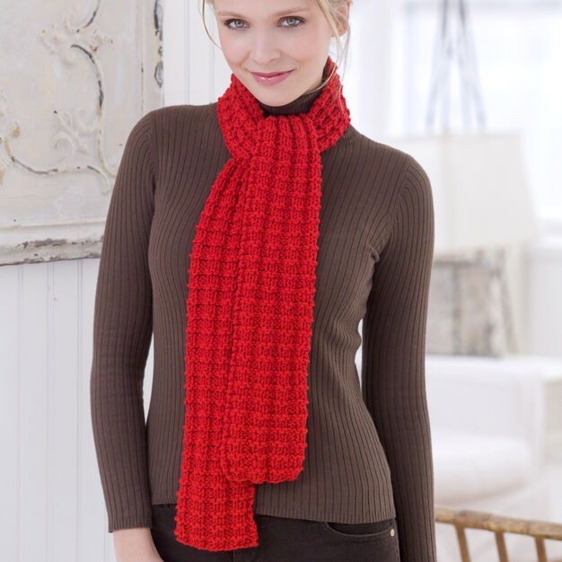 Red Heart Heartwarming Knit Scarf