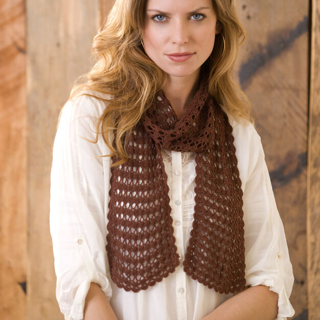 Aunt Lydia's Sensational Lacy Scarf in color