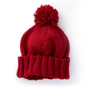 Go to Product: Caron Basic Family Knit Hat in color