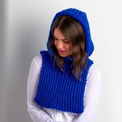 Go to Product: Bernat Chunky Knit Hood in color