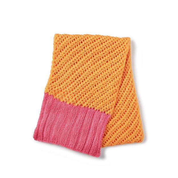 Caron Surprise Ending Knit Scarf in color