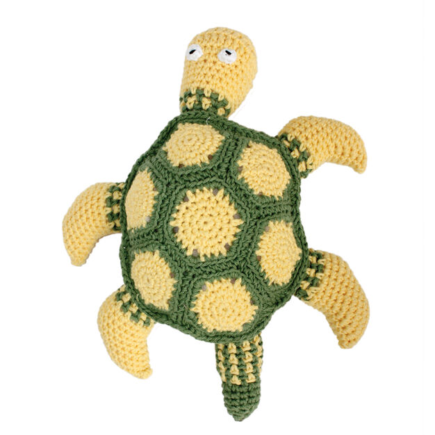 Lily Sugar'n Cream Zippy the Sea Turtle in color