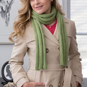 Go to Product: Red Heart Thick Ribbed Beginner Scarf in color