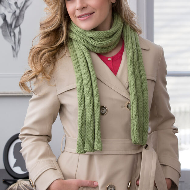 Red Heart Thick Ribbed Beginner Scarf in color