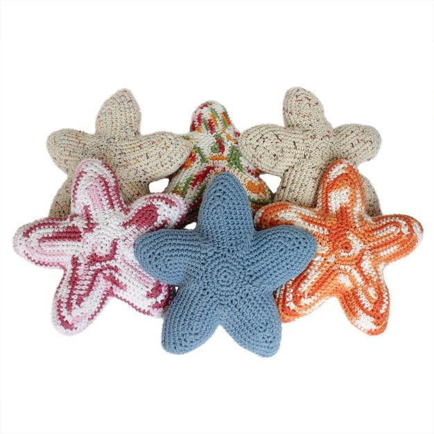 Lily Sugar'n Cream Starla the Starfish, Love Starla in color